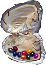 3PCS Oysters with 10 Rainbow Oval Rice Pearls Inside Each Oyster,Mini Monsters,Rainbow Monster Oysters