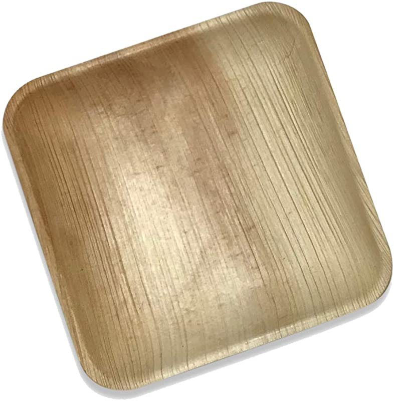 Palm Leaf Square Dinner Plates 25 Pack Of 8 Eco Friendly Disposable Dinnerware By Rustic Earthware Compostable Biodegradable Plates Weddings Showers Parties Special Occasions Gatherings