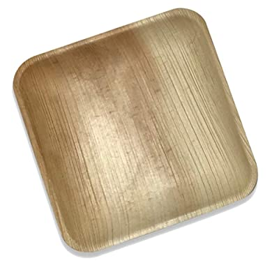 "Palm Leaf Square Dinner Plates | 25 Pack of 8"" ..."