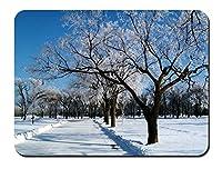 冬、雪、霜、木、道路 パターンカスタムの マウスパッド 旅行 風景 景色 (22cmx18cm)