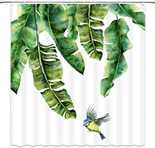 Palm Leaf Shower Curtain Tropical Banana Tree Plant Leaves  Hawaii Watercolor Cute Bird Concise Comfortable Green White Bathroom Curtains Polyester Fabric Waterproof 70 X 70 Inches Include Hooks