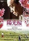 陽光桜-YOKO THE CHERRY BLOSSOM- [DVD] image