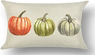 WePurchase Autumn Fall Y'all Beautiful Watercolor Hand Painted Red Green Grey Pumpkins Decoration Cotton Linen Decorative Home Sofa Living Room Throw Pillow Case Cushion Cover Rectangle 12x20 Inches
