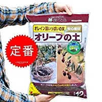 LAND PLANTS 【ガーデン用品】 オリーブの土 12L