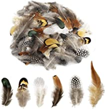 180pcs 6 Style Natural Feathers Assorted Mixed Feathers for Dream Catcher Crafts Decoration