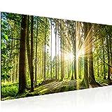 Wandbilder Wald Landschaft Modern Vlies Leinwand Wohnzimmer