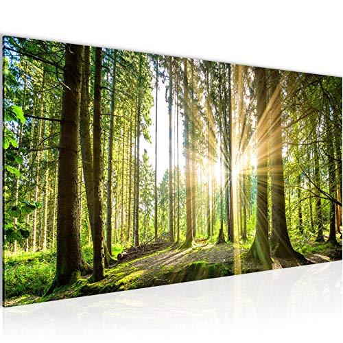 Wandbilder Wald Landschaft Modern Vlies Leinwand Wohnzimmer Flur Sonne Grün 503812b