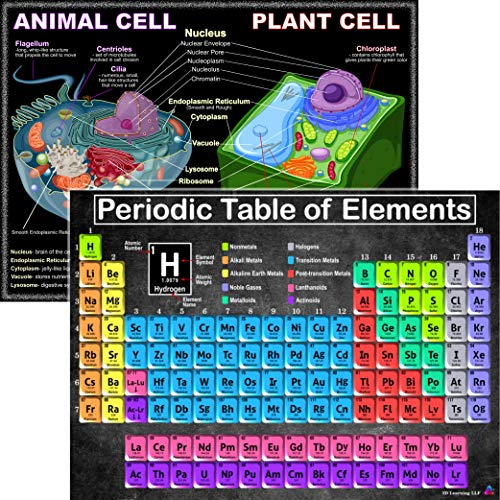 Periodic Table and Cells Science Posters - Laminated 14x19.5 - Educational Charts, Classroom Posters and Decorations, Back to School Supplies, Learning Posters for Biology and Chemistry Classes, STEM and STEAM posters