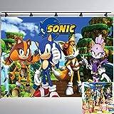 Sonic Backdrop   Boy Birthday   Baby Shower   Boom   Hedgehog   1st   Party...