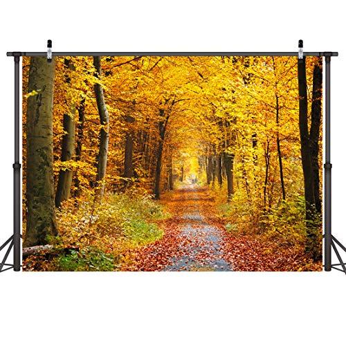 LYWYGG 7x5FT Hojas caídas Paisaje de Hoja caduca Paisaje Natural Telones de Fondo de otoño Árbol y Hojas de otoño Amarillas Ver Decoraciones de Fiesta CP-68