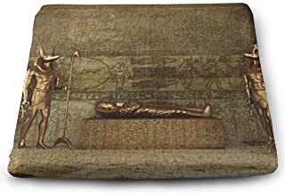 SZjinghao Chair Square Cushion,Seat Cushion for Home Office Dinning Chair Solid Color Indoor Outdoor,Chair Pads Ancient Egyptian Pharaoh Decoregyptian Bronze Statue Guarded The Queen
