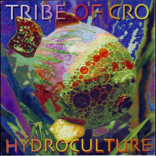 61BgRULsBIL - Cultivez Avocats et Graines avec ces Vases en Verre à Hydroculture