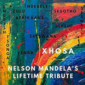 Nelson Mandela's Lifetime Tribute