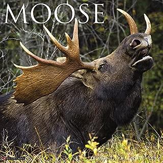 Best deer and deer hunting 2019 calendar Reviews