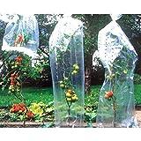 Emanhu Trading Tomaten Reifehaube Schutzhaube Reifefolie 10x0,65 M Tomatenschutz