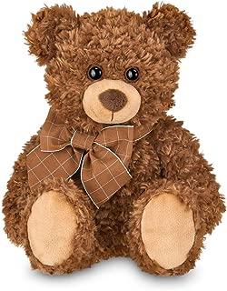Best money teddy bear Reviews