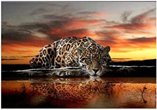 Poster Landscape Posters and Prints Nature Cloud Sunset and Leopard Art Canvas Painting Wall Pictures for Living Room Home...