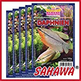 SAHAWA® Frostfutter Daphnien = Wasserflöhe,5X 100g Blister + 1 Blister gratis, verpackt mit Trockeneis -78°C, Aquarium, Aquaristik, Fischfutter, Frostfutter
