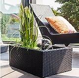 Heissner 015195-00 Rattan Water Garden