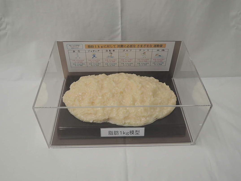 アデレード経済的不足脂肪模型 フィギアケース入 1kg ダイエット 健康 肥満 トレーニング フードモデル 食品サンプル