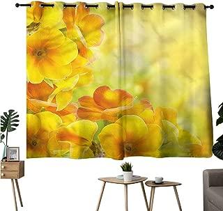 Jaydevn Home Darkening Curtains Grommets Curtain Doorway Yellow,Blossoming Flowers Circles Room/Bedroom W63 x L45