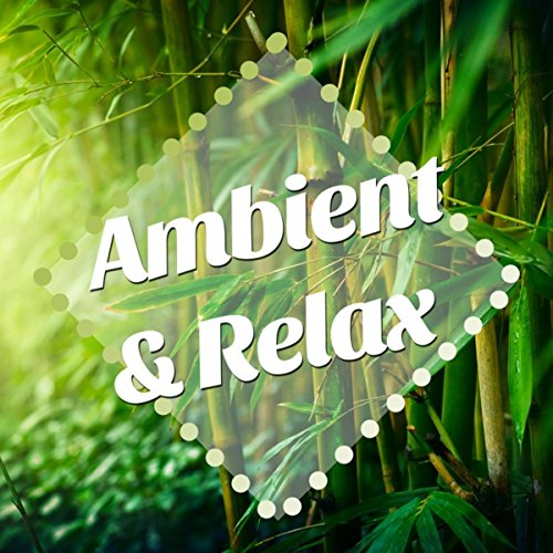 Ambient & Relax: New Age Vibes with nature Sounds and Piano Lullabies...