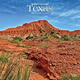 Texas Wild & Scenic 2022 12 x 12 Inch Monthly Square Wall Calendar with Foil Stamped Cover, USA United States of America Southwest State Nature