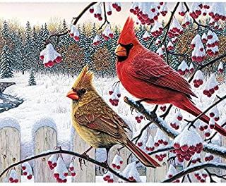 DIY 5D Diamond Painting by Number Kits, Crystal Rhinestone Diamond Embroidery Paintings Pictures Arts Craft for Home Wall Decor, Full Drill - Snow Cardinals 10X12 Inch