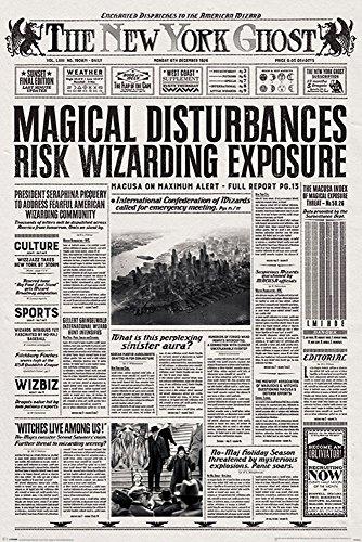 Fantastic Beasts - Phantastische Tierwesen - The New York Ghost - Film Kino - Poster Druck - Größe 61x91,5 cm