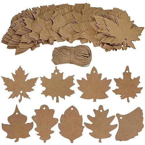 Leaf Shapes: Amazon com