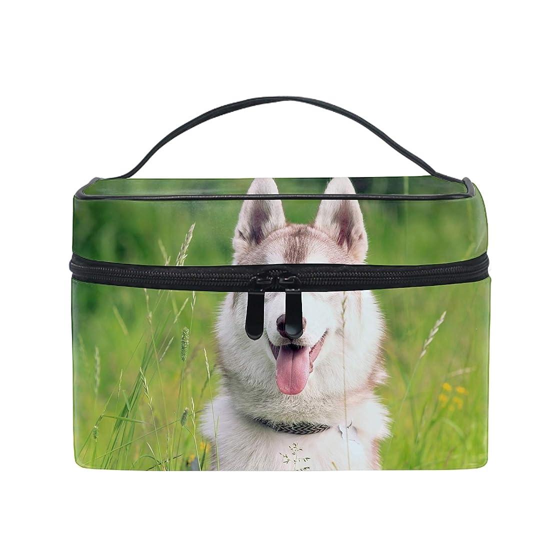 画面何十人も賞賛する化粧ポーチ 仕分け収納 シベリアンハスキーマズル犬防水 軽量 大容量 通勤 出張 旅行用