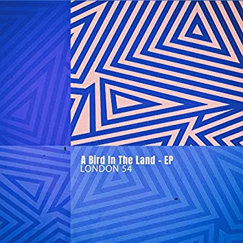 A Bird in the Land - EP
