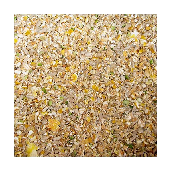 Hollybeck® No Grow No Mess Wild Bird Food - 20KG Sack - FREE P & P INCLUDED (FOR UK only)