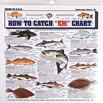 Fishermans Saltwater Fish Chart #2