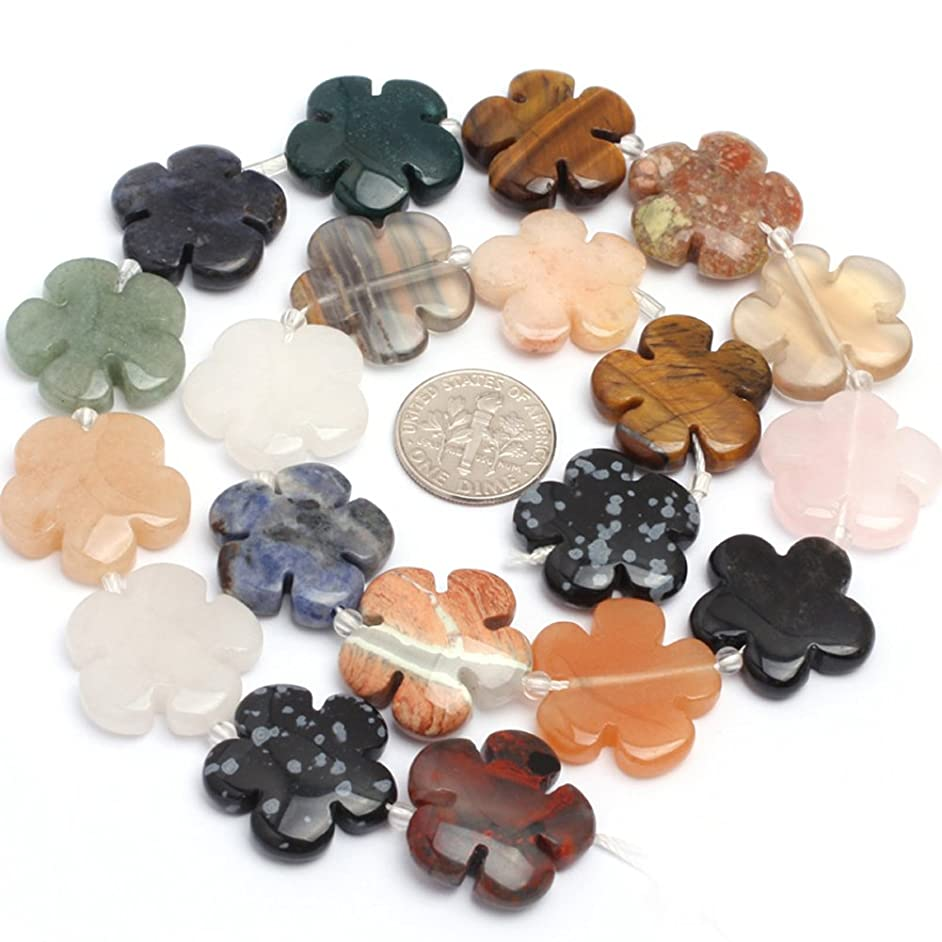 Mixed Stone Beads for Jewelry Making Natural Gemstone Semi Precious 20mm Flower 15