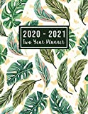 2020-2021 Two Year Planner: big 2 year monthly planner | Monthly Schedule Organizer - Agenda Planner For The Next Two Years, 24 Months Calendar, ... Design (2 year monthly planner 2020-2021)