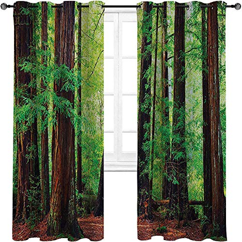 """Blackout Curtain Tree Woodland Breathable and Airy Window Panel Drape Redwood Trees Northwest Rain Forest Tropical Scenic Wild Nature Lush Branch Image 2 Grommet Top Curtain Panels,52""""W x 63""""L"""