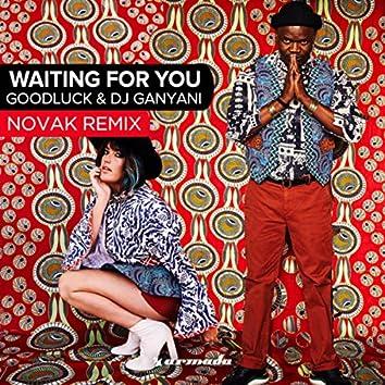 Waiting For You (Novak Remix)