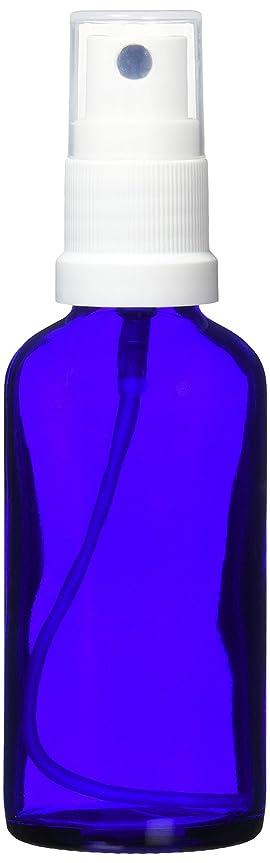 面白い小人小人ease 保存容器 スプレータイプ ガラス 青色 50ml