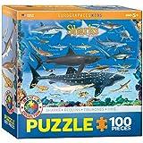 Sharks 100 Piece Jigsaw Puzzle