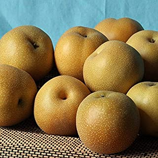 Imperial Asian Pears - 4 lbs - The Fruit Company