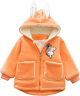 DOLYKUI 0-4 Years Baby Coat, Children Kids Winter Warm Cartoon Animal Zipper Jacket Hooded Coat Tops, Kids Christmas Valentine's Day Winter Long Sleeve Clothes