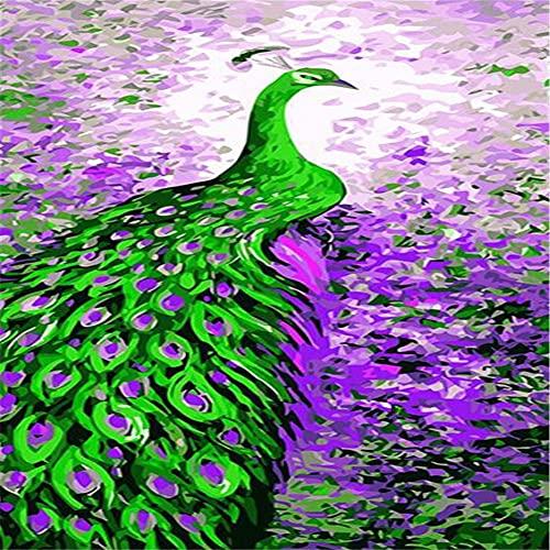 Dipingere con i numeri adulti,Pavone viola verde DIY Painting by Numbers kit per dipingere con i numeri con pennelli e pigmento Acrilico per Decor casa pareti Regalo(Without frame,12x16in)F513