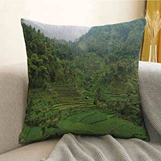 Balinese Silky Pillowcase Terraced Rice Paddies in Hillside Tropical Valley Asian Farming Life Agriculture Theme Super Soft and Luxurious Pillowcase W16 x L16 Inch Green