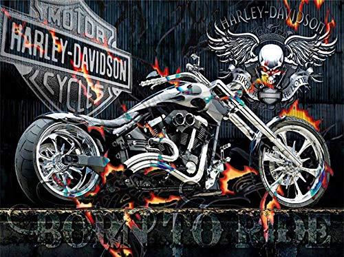 WAFJJ Malen nach Zahlen Erwachsene Motorrad DIY Ölgemälde Zeichnung Bunte Leinwand mit Pinsel Dekor Dekorationen Geschenke-16 * 20 (Ohne Rahmen)