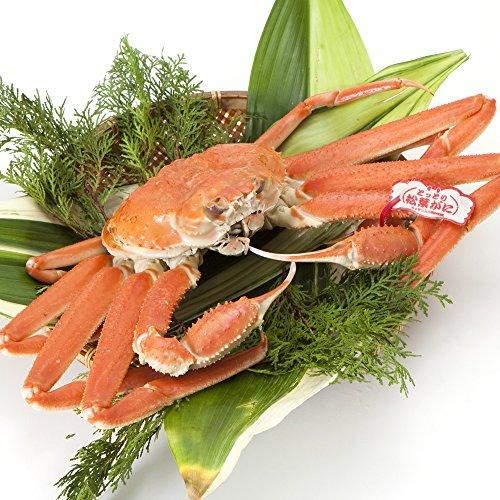 日本海市場 贈答用タグ付き 特上松葉ガニ(ずわいがに姿) 大サイズ1枚(茹で800g前後)「本物」の松葉ガニを産地直送でお届けします