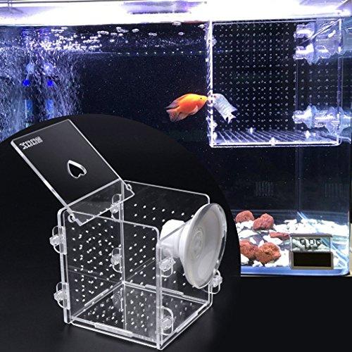 ECMQS fischzucht Forelle, Transparent Kunststoff Fisch Züchter Box Fischei Brutstätte Jungfisch Isolation Box