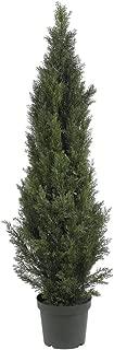 Nearly Natural 5291 5ft. Mini Cedar Pine Tree (Indoor/Outdoor)