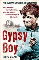 Gypsy Boy: The bestselling memoir of a Romany childhood