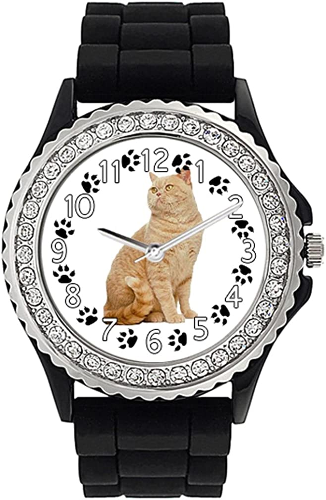 British Cream Shorthair Cat Fixed High order price for sale Crystal Silicone Rhinestone Jelly Wr